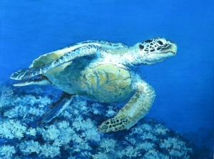 """Turtle I"" Oil on gallery panel, 16""x12"". March 2012"